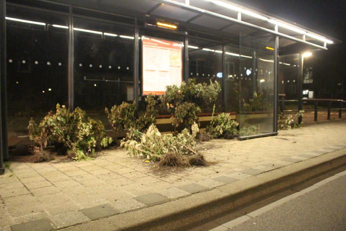 De bushalte in Hengelo