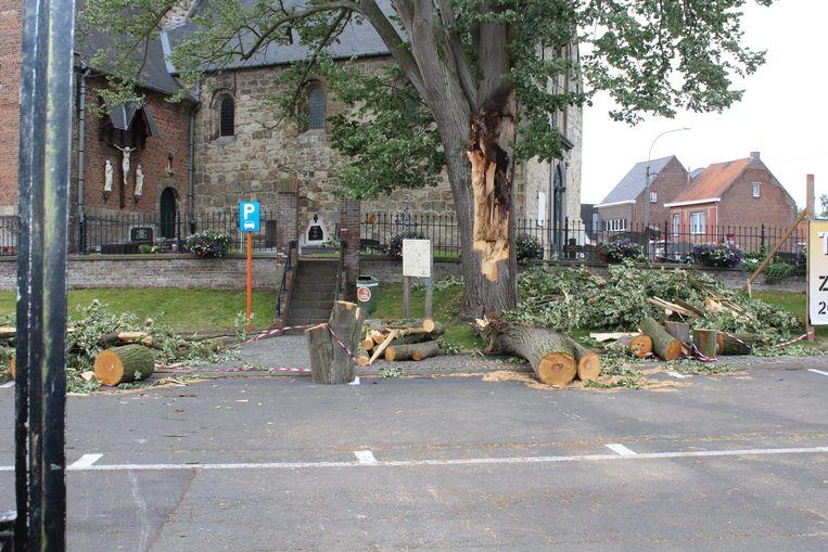Een oude boom aan de kerk van Westrem brak onder de stormwind.