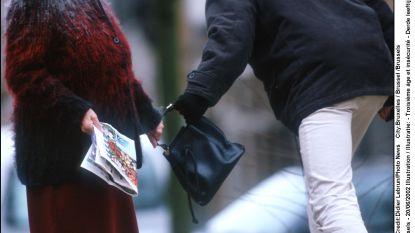 Duo op fietsen berooft zes bejaarden van handtassen: tot 3 jaar cel gevraagd