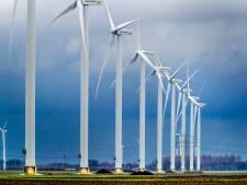 Zwollenaar krijgt geen extra geld van windpark Tolhuislanden