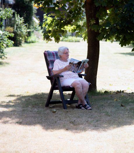 Even afkoelen in de schaduw? Alleen in Alphen en Gouda minder bomen dan inwoners