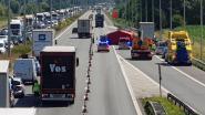Bejaard echtpaar omgekomen op E40 Nevele: auto valt stil, achterliggende truck kan aanrijding niet vermijden