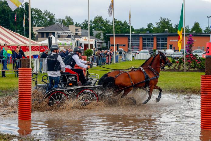 Jan van Tien uit Nuenen met de paarden Cor en Jantje.