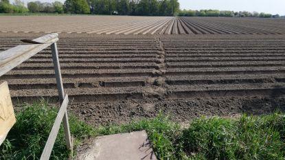 En toen ploegde een landbouwer plots de voetweg om (al houdt dat wandelaars niet tegen)