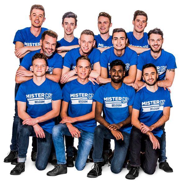 De finalisten van Mister Gay Belgium komen zich zaterdag in Aalter voorstellen.