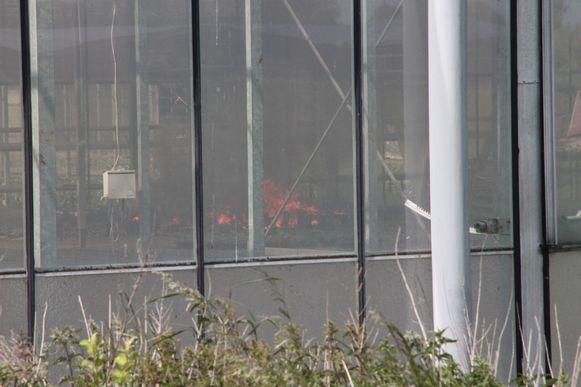Door het glas van de serres kon je de vuurgloed zien.