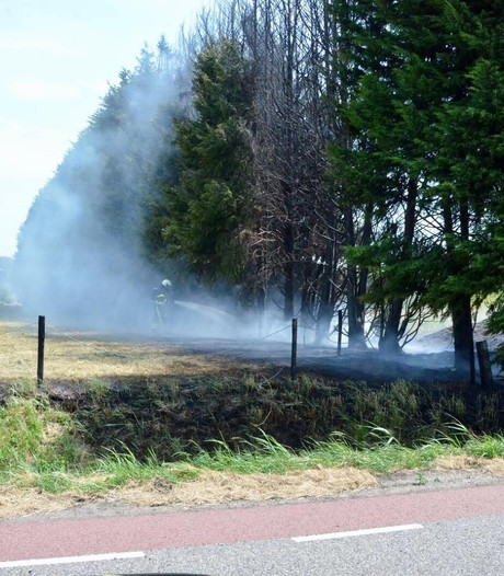 Meerdere bermbrandjes in Steenbergen onder controle