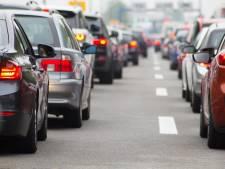 'Veeteelt in Europa is slechter voor klimaat dan alle auto's samen'
