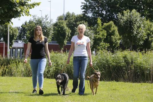 Monique Dubbeldam en haar dochter Yentle met de twee Roemeense zwerfhonden Indy en Faye. De twee honden gaan mee.
