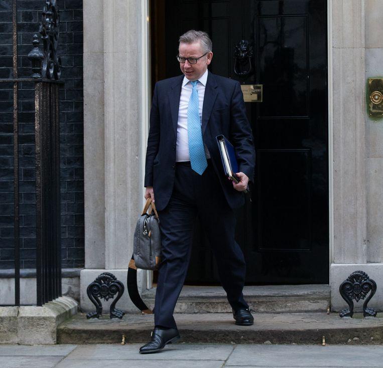Michael Gove, minister van Onderwijs. Beeld getty