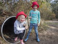 Kabouterweken in het bos: pad op Sallandse Heuvelrug is vernieuwd
