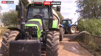 Boeren lijden onder de aanhoudende droogte