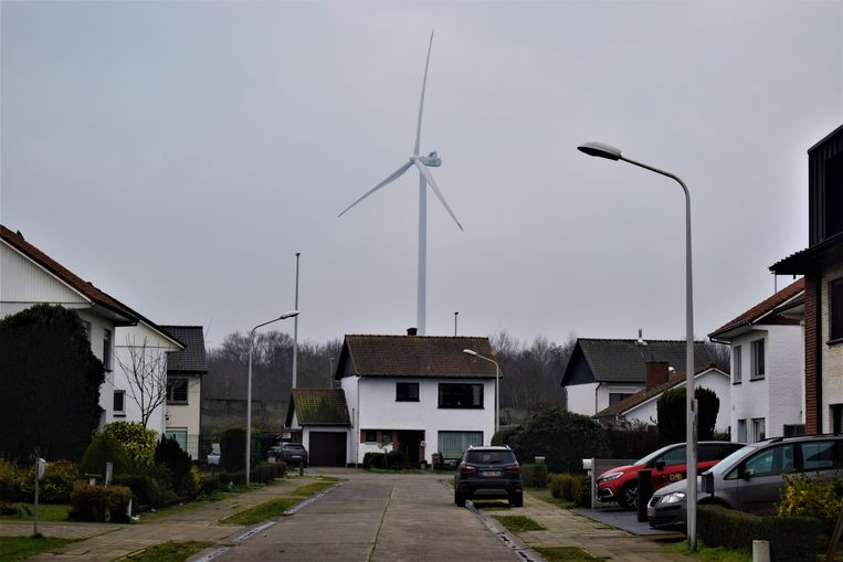 Windmolens zijn ondertussen niet meer weg te denken uit het Zelzaatse straatbeeld.