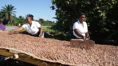 Eerlijke chocolade is het lekkerst: Barry Callebaut streeft tegen 2025 naar 100% duurzame producten