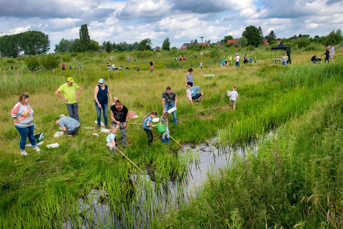Deelnemers aan de Slootjesdag konden met een schepnet aan de slag om zoveel mogelijk waterdiertjes te vangen.