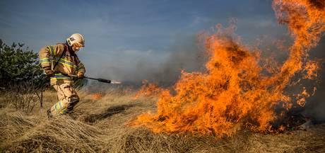 Brandgevaar op Veluwe neemt toe