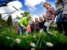 Kinderen beleven, proeven en bewegen bij Groen doet goed