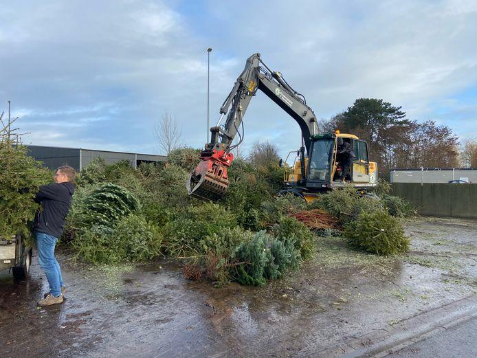 De kerstbomen werden naar de gemeentewerf in Rijssen gebracht als groenafval.
