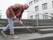 Meerderheid van Schouwse Raad wil strenger toezien op bestrijding onkruid