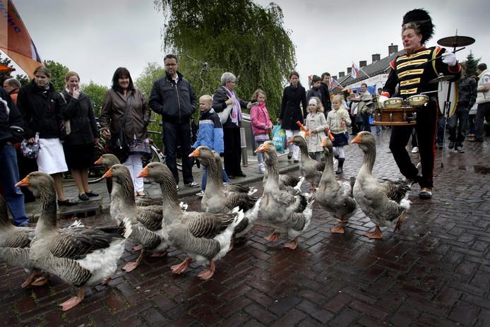 Zondag in Tubbergen: een ganzenparade.