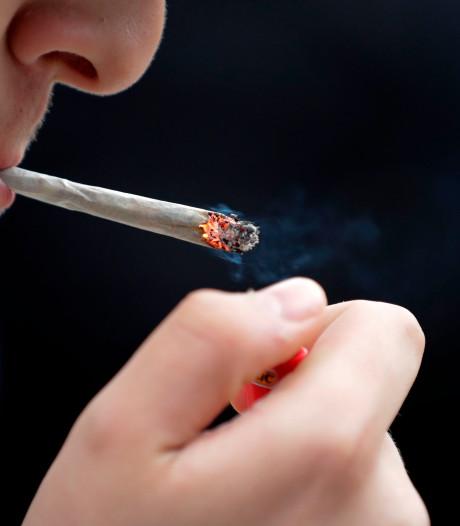 """Pourquoi le cannabis rend-il les uns joyeux et les autres """"paranos""""?"""