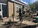 In de Frederikstraat wordt ook gezwoegd. Daar hebben vwo-leerlingen op initiatief van de bewoners ontwerpen gemaakt die de groenstrook veranderen in echte tuinen