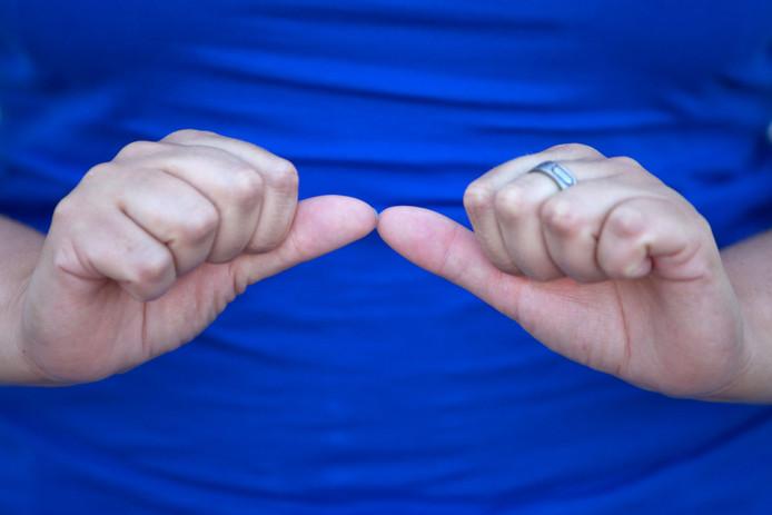 Een doventolk laat met gebarentaal 'ASSISTENT' zien