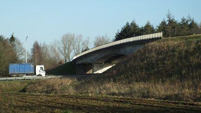 Herstelling voor E17-brug in Klapstraat