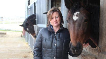 Paarden bieden unieke sleutel om kinderen tot rust te laten komen