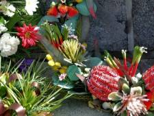 Herdenking slachtoffers watersnoodramp