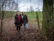 Buurt baalt: duizend bomen plat voor A15-verbreding