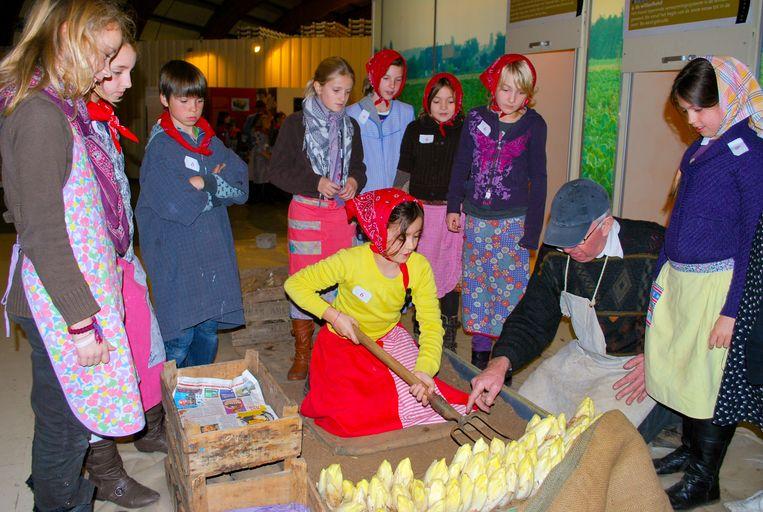 Verkleed als boer of boerin maken kinderen kennis met het Belgische 'witte goud'.