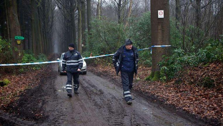 De bossen in Maria-Aalter in Wingene waar het lijk van de kasteelheer werd teruggevonden. Beeld afp