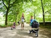 Herstelplan voor toerisme Heuvelrug en Vallei, maar het moet niet te druk worden