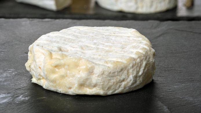 Un fromage Saint-Marcellin.