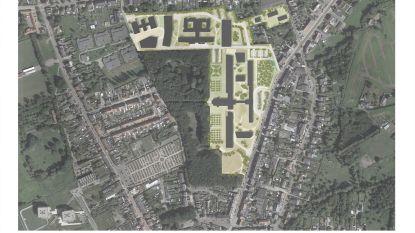 Mobiliteitswijzigingen rond project Borgerwijk op vraag van buren