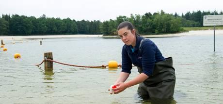 Controle zwemwaterkwaliteit meren Kop van Overijssel gestart
