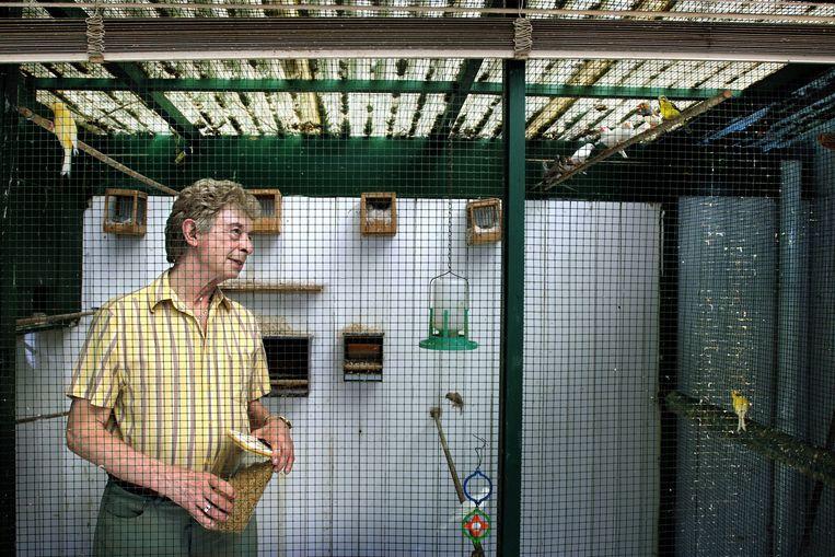 Gerard de Vries in zijn voliere bij zijn vogels. Beeld Joost van den Broek / de Volkskrant