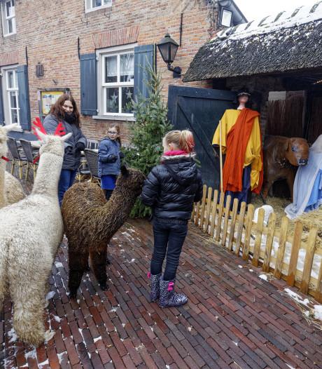 Den Dungen wil hem ook, net als die mooie in Liempde: een eigen kerststallenroute