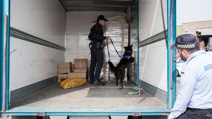 Spaanse drugshonden trainen in Voeren