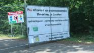 Vleermuizentoren Molenberg niet vergund
