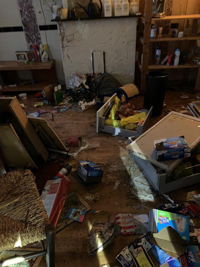 Verwaarlozing in een huis van een man van middelbare leeftijd in de Krimpenerwaard, LID heeft vijf katten uit de woning gehaald. De dieren zijn voorlopig in beslag genomen en maken het goed.