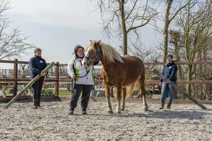 Niet alle cliënten komen gedurende de coronacrisis naar zorgboerderij De Stelle, maar Jacqueline Claassens (midden) wel. Links van haar staat Simone Burgel, rechts Astrid van Kleeff.