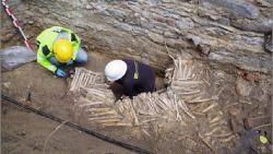 Straffe ontdekking: muren uit beenderen en schedels onder Sint-Baafskathedraal