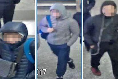 Drie minderjarigen opgepakt voor brutale tigerkidnapping op vrouw en kinderen