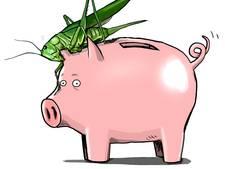 Verdachten beleggingsfraude: 'Buik vol van beleggen'