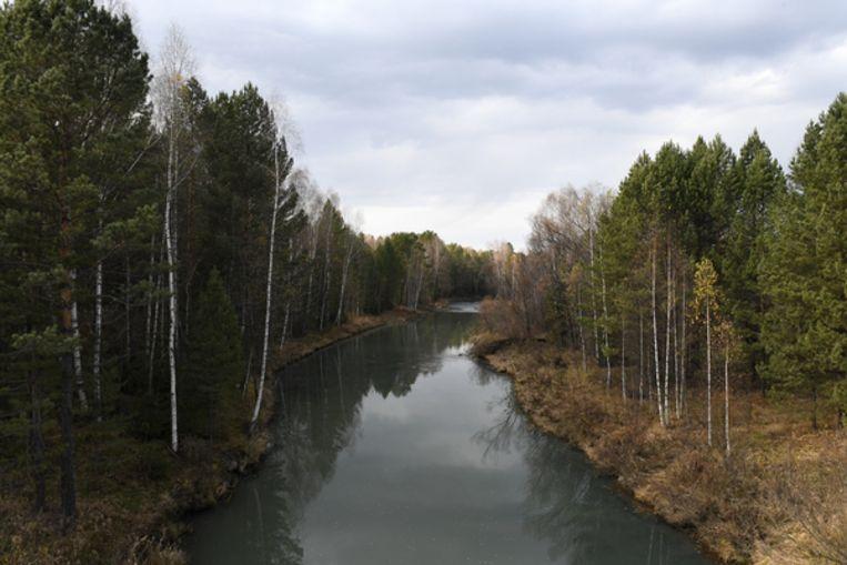 Een rivier in de Altaj-regio in Rusland Beeld Claudia Heinermann