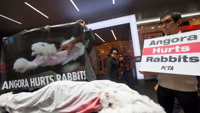 Dierenrechtenactivisten manifesteren tegen de gruwelijke behandeling.