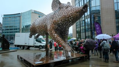 Gaia onthult reusachtig varken aan Schumanplein