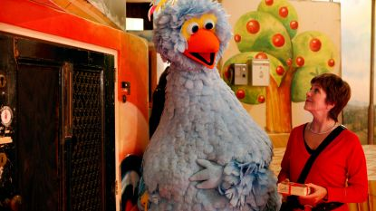"""Pino helemaal uit zijn lood geslagen: """"We worden al jaren minachtend behandeld in Sesamstraat"""""""